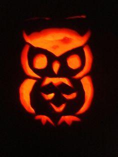 owl pumpkin((: so cute!!