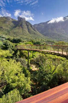 Boomslang Walkway Kirstenbosch Arboretum Cape Town, South Africa Mark Thomas and Henry Fagan photo © Adam Harrower Oh The Places You'll Go, Places To Travel, Places To Visit, Mark Thomas, South Afrika, Le Cap, Cape Town South Africa, Africa Travel, Botanical Gardens