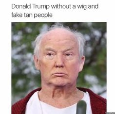 Donald Trump without a wig #Funny #Memespic.twitter.com/6YOkF1RedJ http://ibeebz.com