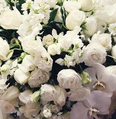 White lushness  #flowers #floralfix #flowersofinstagram #whitewedding #floral #pretty  #florist #weddingbouquet #calledtobecreative #mybeautifulmess #livecreatively #flashesofdelight #weddingflowers #lovelysquares #pursuepretty  #vscoflowers  #makemondaypretty #sydneywedding  #floralfridaycompetition  #petalsandprops #softdreamyphotography #floralperfection #northenbeaches #sydneyflorist