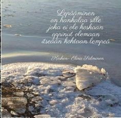 Niin❤ Finnish Words, Motto, Memes, Quotes, Pictures, Quotations, Photos, Meme, Mottos