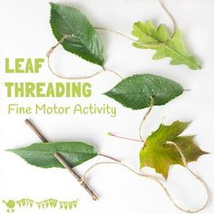 ALL NATURAL LEAF THREADING ACTIVITY for kids - engage with Nature, get creative and develop fine motor skills. This nature craft is fun a great way to get kids outside and develop their fine motor skills. A fun Summer craft for kids. Forest School Activities, Nature Activities, Preschool Activities, Outdoor Activities, Waldorf Preschool, Nature Based Preschool, Fine Motor Activities For Kids, Nursery Activities, Dementia Activities