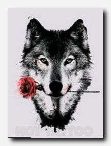 wolf tattoo Drawings ❤️
