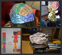 Map of the brain printable, growing a pumpkin, and mummifying a chicken!