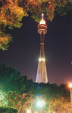 Sydney Tower Australia from Hyde Park