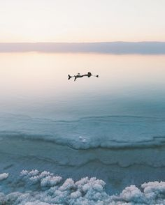 the high salt concentration in the water makes it feel like you're being lifted from below when you're floating in the dead sea. not a bad way to relax at sunset. by ravivora