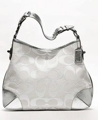 I love my bag, and this would be a wonderful addition.  Coach!