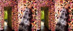 Raf Simons introduced his new line for Christian Dior BEAUTIFULLY….with over 1 MILLION flowers! Part of me adores the presentation and how much hard work went into it and the other part wonders what happened to all the… read . Raf Simons, Flower Power, Christian Dior, Million Flowers, Flower Wall, Hard Work, Presentation, Painting, Beauty