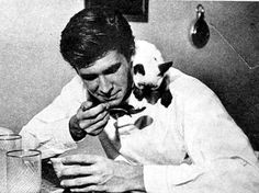 Anthony Perkins and Siamese cat