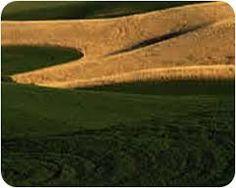 Afbeeldingsresultaat voor paisagem agraria do alentejo
