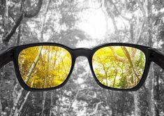 3677f085281071 Diese Brille lässt Farbenblinde wieder richtig  sehen  farbe
