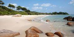 Prentresultaat vir club med bintan island Bintan Island, Club, Water, Outdoor, Water Water, Outdoors, Outdoor Games, The Great Outdoors, Aqua
