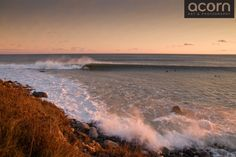 Lawrencetown Surf Photo by Adam Cornick