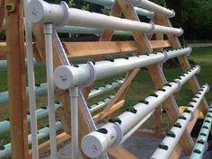 Cómo crear un sistema hidropónico casero 3 #hidroponico