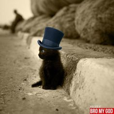 Kitty in a top hat!