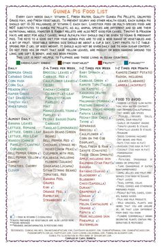 "Download all you want! Ready-to-print. 8.5"" x 13"" size. This list is most helpful to guinea pig owners living in the Philippines and in neighboring Asian countries. Information based on the ff. sit..."