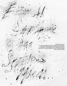 Eternal Sunshine of the Spotless Mind by Brandon Schaefer