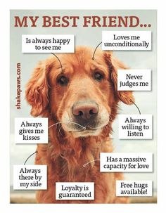 - repinned by www.StoneArtUSA.com ~ affordable pet memorials ans urns