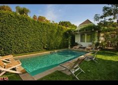 Small pool, small yard, giant hedge