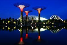 Garden by the Bay Singapore, National Garden Singapore, evening Night Blue hour