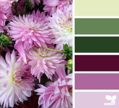 dahlia hues - Voor meer kleur inspiratie kijk ook eens op http://www.wonenonline.nl/interieur-inrichten/kleuren-trends/