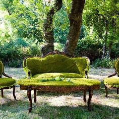 garden moss - great idea for antique furniture that is beyond repair, or even mock-antique furniture!