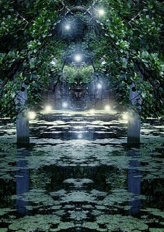 Sacred Waters - Artwork : Enchanted Forest