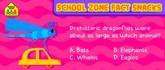 Yowza!  #funtrivia #Trivia #Learning #games #Kids #kidsactivities #Education #DIY #HomeSchool