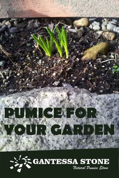 Natural pumice soil amendement increases the soil water conserving capabilities, provide oxygen to the root zone, increases circulation and makes a source of food for the plants to take. Pumice is one of a kind amendment, no other can provide the same benefits. #gardening #pumiceforplants #horticulture #gardensoil #gardenpumice Garden Soil, Gardening, Greenhouse Benches, Soil Texture, Pumice, Horticulture, Conservation, Roots, Planters