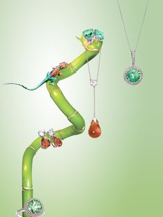 Chameleon Collection. Still Life Jewelry Concept.