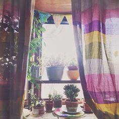 Un sutil espacio para hermosas flores/plantas