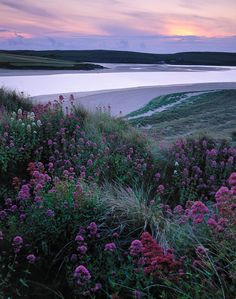 "On one of Sir John Betjamins radio broadcasts he talked about arriving into Padstow and Valerian. The whole of the dunes around Rock and Padstow are awash with them and I wanted to capture these colours. When they sky and sand started taking on the same shades I knew something interesting should result. This is Sir John's End of the End.. ""The next five and a half miles beside the broadening Camel to Padstow is the most beautiful train journey I know. See it on a fine evening at high tide…"