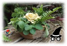 Ground_Coffee_Bowl_Flower_Bowl_Vase_Centre_Piece_Gifts_Favours_forever_Flower  A versatile ground coffee bowl some greenery and a handcrafted forever flower. An extraordinary table decoration gift favour idea.