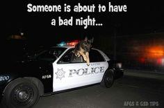 Very bad night #german #shepherd #dog
