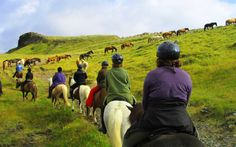 July 2016 award-winning Iceland horse riding vacation for women. 9 days riding Icelandic horses through Iceland's valley's, mountains and countryside.