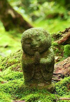 moss covered Buddha statue