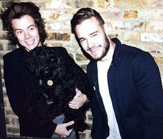 The boys and #sergedoodle. #HangWithLiamAndHarry