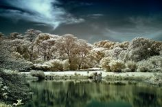 Infrared Photography....from June 2012 Popular Photography