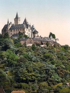 You are looking at an artistic picture of The castle, Wernigerode, Hartz, Germany. This color photochrome print was created between 1890 and 1900 in Hartz, Germany.