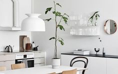 If you havefollowed my blog you know I have always beencrazy about plants. I think your home looks very empty without f...