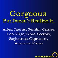 the aries horoscope Zodiac Sign Traits, Zodiac Signs Sagittarius, Zodiac Signs Horoscope, Zodiac Star Signs, My Zodiac Sign, Astrology Zodiac, Astrology Signs, Zodiac Facts, Frases