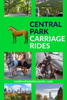 Central Park Horse and Carriage Rides! - Experience the beauty of Central Park with a horse and carriage ride! Horse-drawn carriages are a u - New York City Vacation, New York City Travel, Best Family Vacation Spots, Family Travel, Couples Resorts, Geography For Kids, Museums In Nyc, Outdoor Fun For Kids, Travel Activities