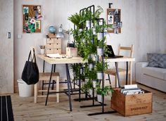 Un mur végétal composé de deux piédestaux mis côte à côte sépare deux postes de travail.