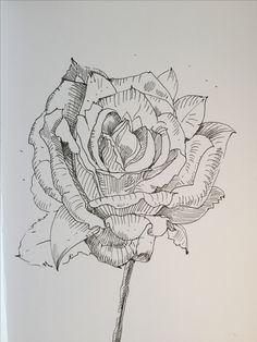 Sketch rose by artvalerim