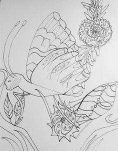 Butterfly Tangle-Inspired. Micron ink. By Kelli Cantrell. http://kcantrartideas.weebly.com/drawings.html