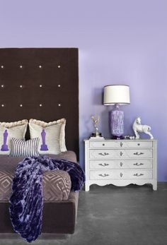 Purple Wall Paint Color And Throw In Purple Color