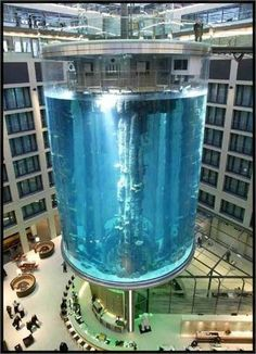 The AquaDom, located in the lobby of the 5 star Radisson SAS Hotel in Berlin, holds 2.500 tropical fish enclosed in an 82 foot high Plexiglass cylinder. The fish tank can be viewed from every room on every floor of the swanky hotel.