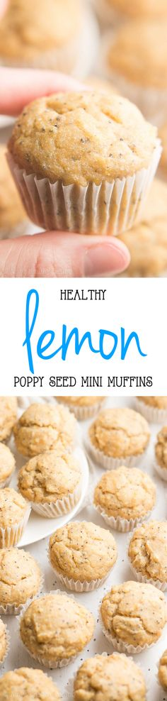 Healthy Lemon Poppy Seed Mini Muffins -- only 38 calories! They taste like they came straight from a gourmet bakery! {easy recipe from @amybakeshealthy}: