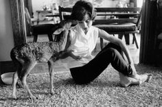 Audrey Hepburn & Pippin, her fawn, 1958, Beverley Hills, Los Angeles (© 1978 Bob Willoughby/mptvimages.com)