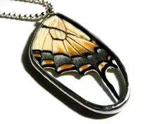 Real Butterfly Wing Recycled Necklace, by Lonesomehobo.    Something to treat myself to!